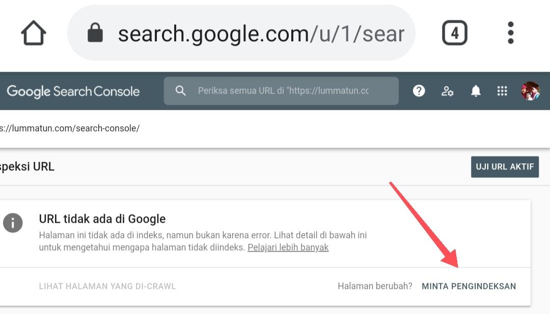 Minta index Google