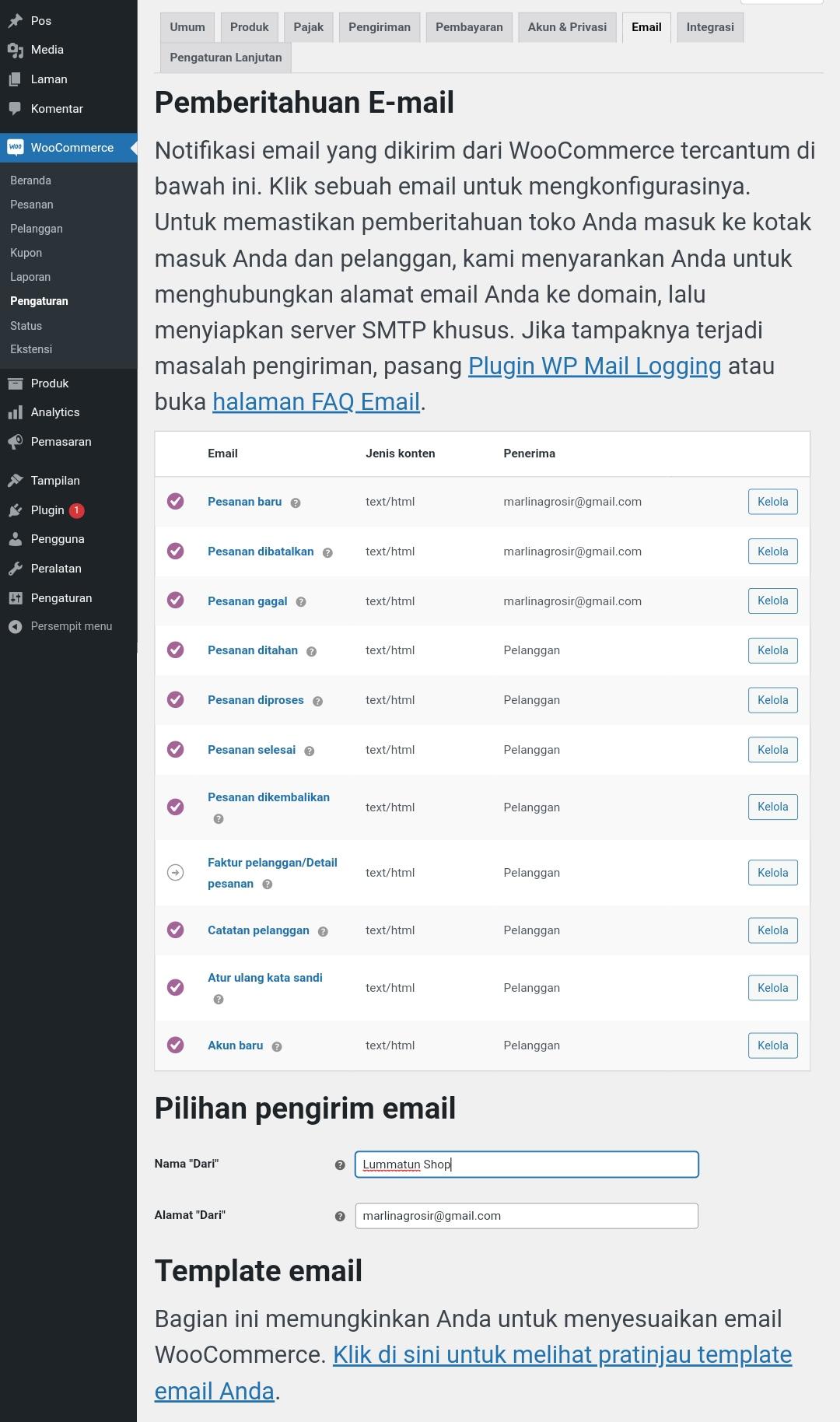 Pengaturan email